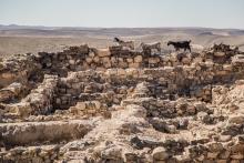 3000 éves falak