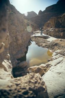 Nedves sivatag