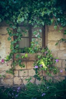 הסטוריה בחלון