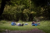 Pihenő egy erdei tisztáson